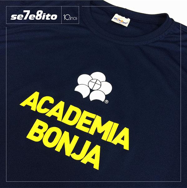 Bom Jesus - Academia